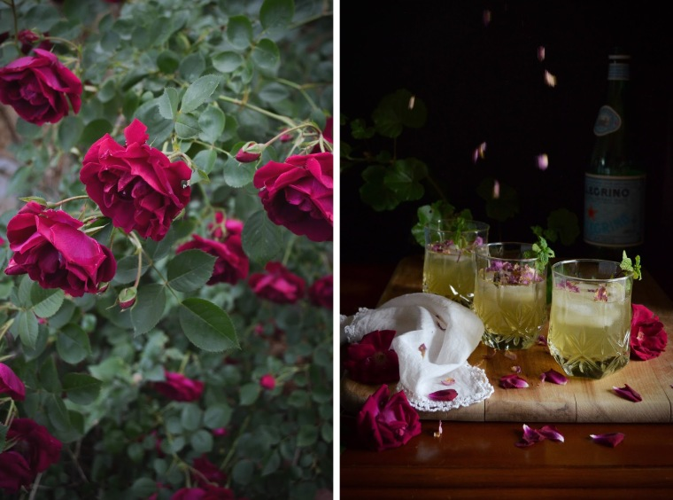 Green Tea Rose Spritzer Recipe