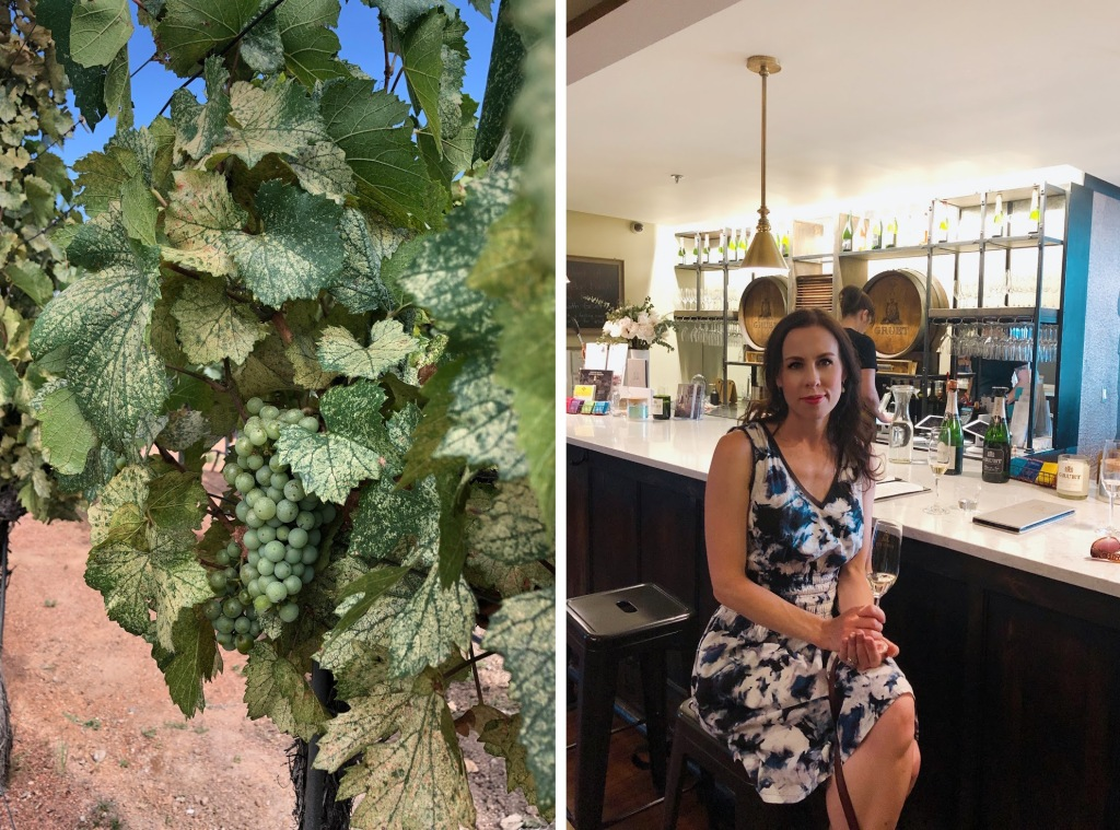 Gruet Winery Albuquerque tasting room and wine review